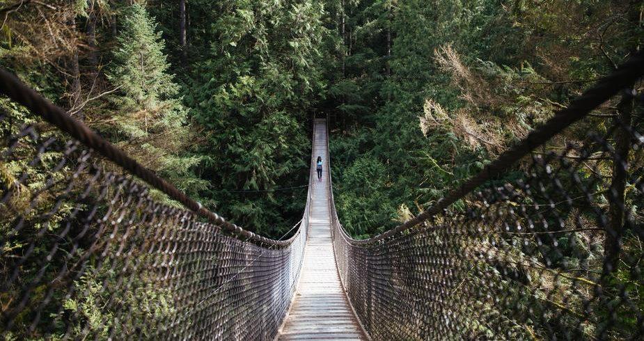 un pont se crée entre des points de vue opposés